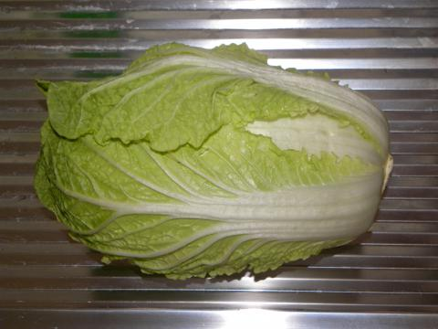 Cabbage, Napa Cabbage / Chinese Credit: Andreas
