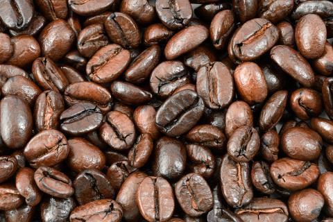 Standard Coffee
