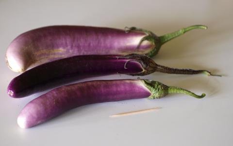 Eggplant, Japanese Eggplant Credit: F. D. Richards