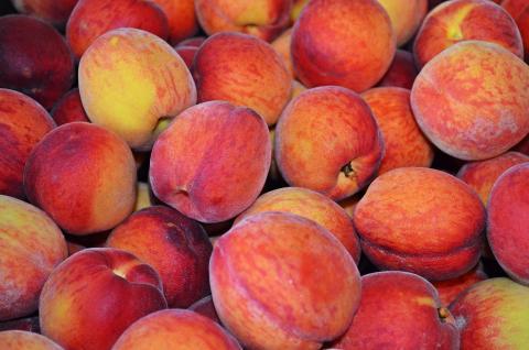 Desert Gold Peach