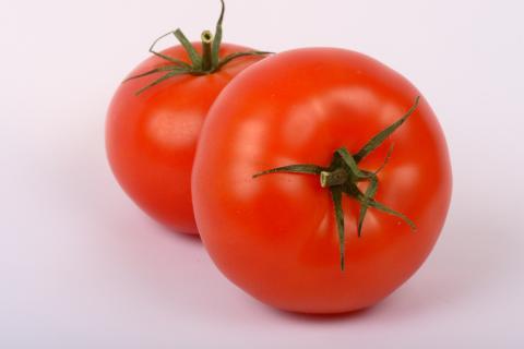 Tomatoes, Siberian