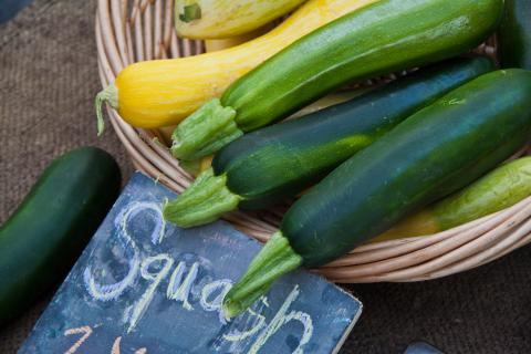 Zucchini- mature