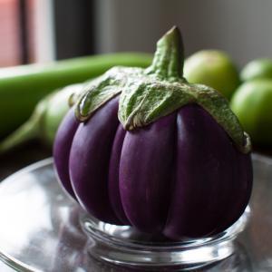Eggplant, Black Globe Eggplant